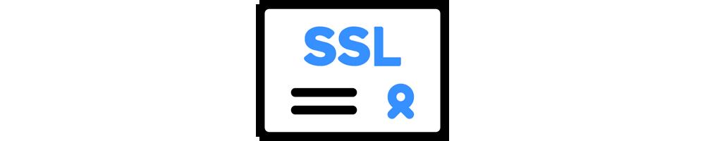 Managed SAN SSL Service